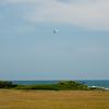 Ultralight and Kite-76