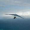 Made a flight-5