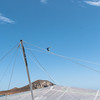 Summer Flying-274
