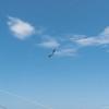 Summer Flying-271