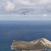 Srutted Glider 14.5-60
