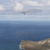 Srutted Glider 14.5-61