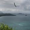 Strutted Glider 14.5-35