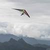 Srutted Glider 14.5-64