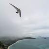 Freedom Flying-40
