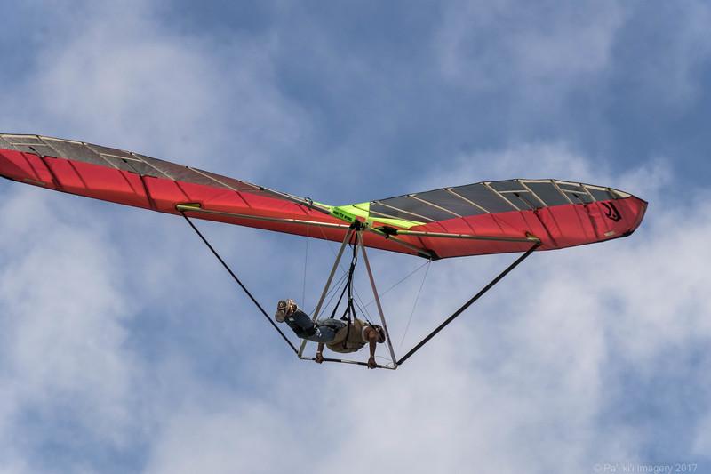 Fine Flying-24