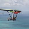 Fine Flying-50