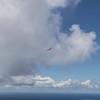 Fine Flying-92