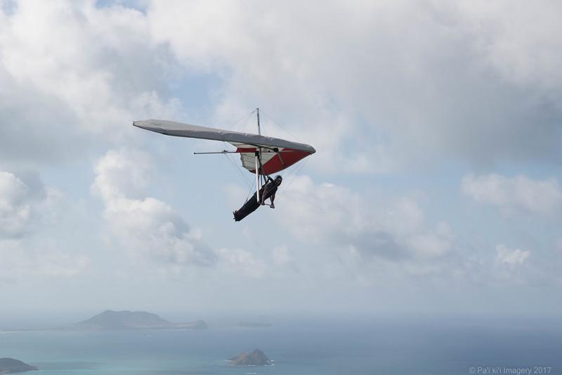 Co Pilot-56