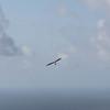 Co Pilot-20