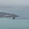 Co Pilot-33