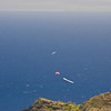 Hang Gliders and Paragliders over Makapuu-168
