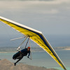 Hang Gliders and Paragliders over Makapuu-133