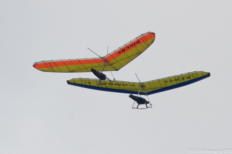 Fred Leo and Dale take to the air-136