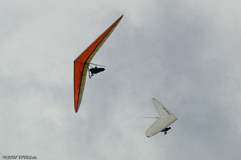 Dynamic Duo-38