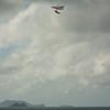 Two Landings-36