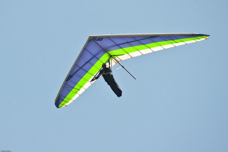 High Flyin-1