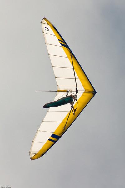 Flying Phil-55