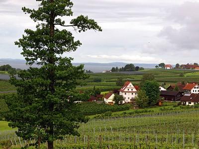 Weingut Schmidt Hattnau 23-05-14 (19)