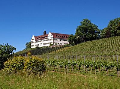 Sclhoss Hersberg Wagnau Bodensee 23-05-14 (2)