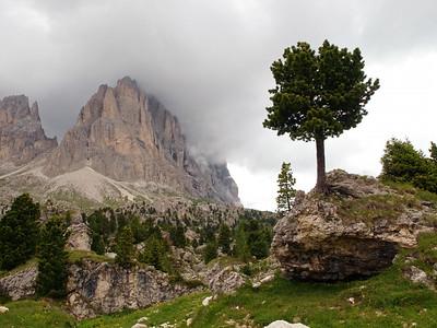 Passo Sella 07-07-14 (42)