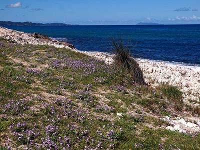 Agios Spiridon 30-04-14 (25)