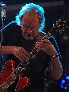 Alvin Lee Ribs & Blues Raalte 28-05-12 (2)
