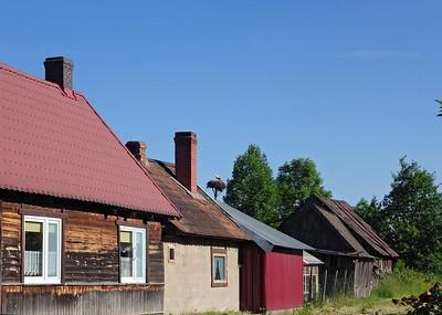Bialowieza 28-05-18 (376)