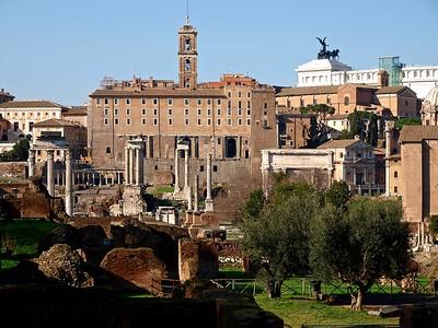 Rome Forum Romanum 30-1-09 (69)