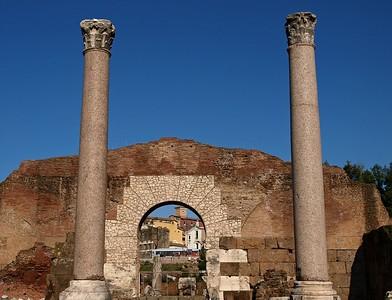 Rome Forum Romanum 30-1-09 (75)