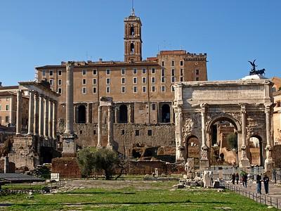 Rome Forum Romanum 30-1-09 (71)
