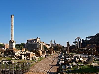 Rome Forum Romanum 30-1-09 (77)
