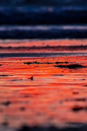 Impressions Torrance Beach