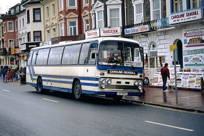Caroline Seagull Great Yarmouth LAH894A Esplanade Great Yarmouth Sep 94
