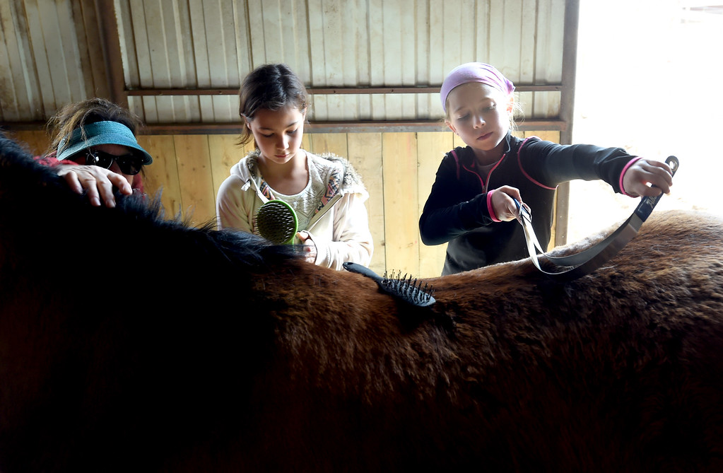 . Lexee Ingram, left, and Samantha Larson, and ranch owner, Marian Hobbs, on the left,  give their full attention to grooming one of the horses.The organization, Happiness Through Horses, helps kids gain confidence by working with horses at Rockin Moon Ranch near Ft. Lupton.  Cliff Grassmick / Staff Photographer/ March 27, 2018