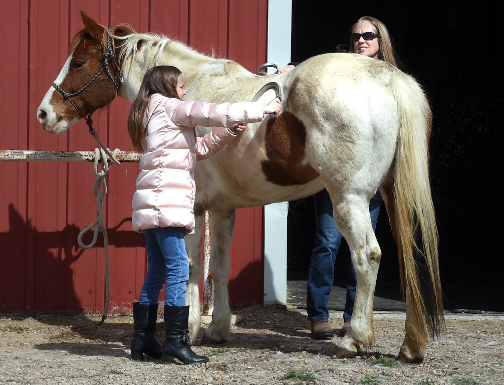 . Megan Harris, left, and her mother, April, groom a horse on Tuesday.The organization, Happiness Through Horses, helps kids gain confidence by working with horses at Rockin Moon Ranch near Ft. Lupton.  Cliff Grassmick / Staff Photographer/ March 27, 2018