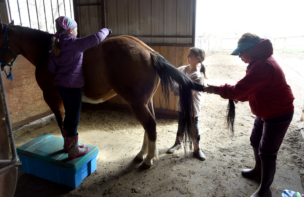. Samantha Larson, left, Lexee Ingram, and ranch owner, Marian Hobbs, give their full attention to grooming one of the horses. The organization, Happiness Through Horses, helps kids gain confidence by working with horses at Rockin Moon Ranch near Ft. Lupton.  Cliff Grassmick / Staff Photographer/ March 27, 2018