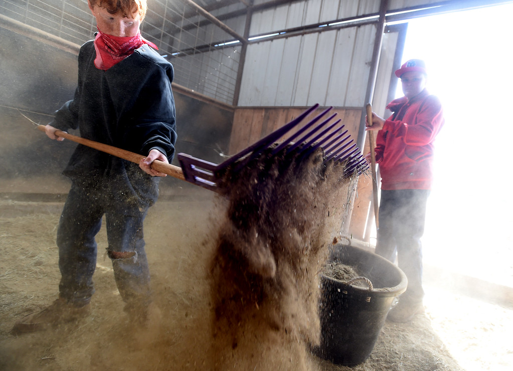 . Timmy Kutscher, left, cleans out one of the stalls at the ranch. Jaedyn Adler is on the right. The organization, Happiness Through Horses, helps kids gain confidence by working with horses at Rockin Moon Ranch near Ft. Lupton.  Cliff Grassmick / Staff Photographer/ March 27, 2018