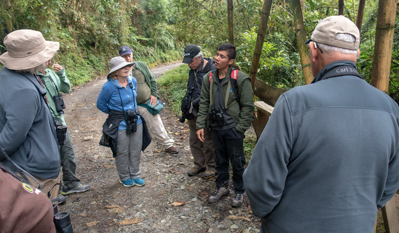 Daniel , our local guide at Rio Blanco, talks about the Antpittas