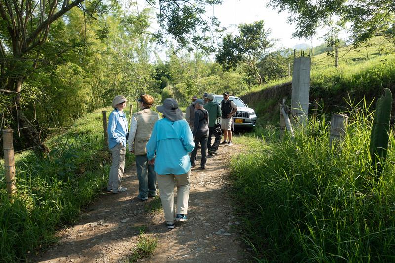 Birding the road to Tinamu Lodge
