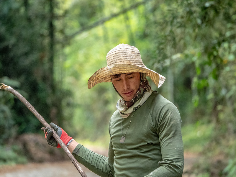 Bamboo Cutter on road
