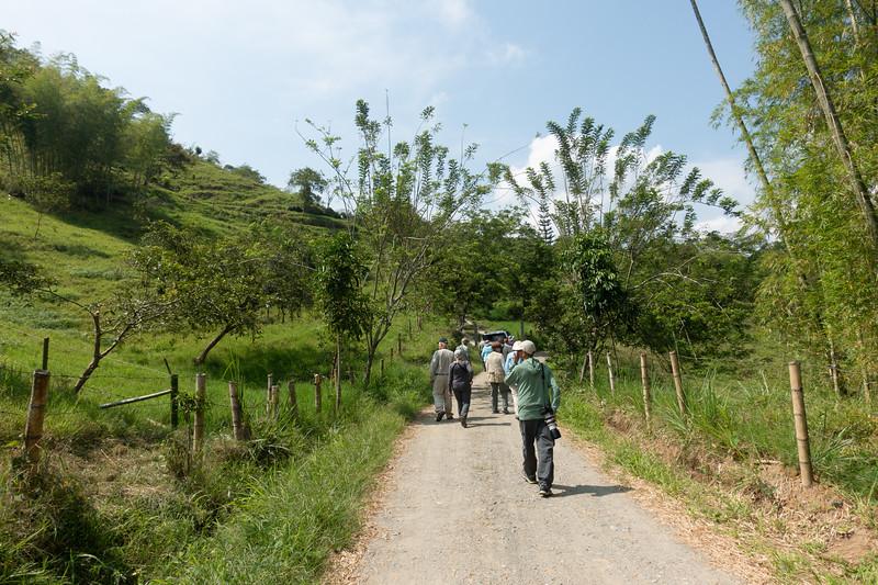 On the road ro Tinamu Lodge