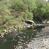 Gwynns Falls stream in Gwynns Falls/Leakin Park