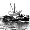"""Editor"" on way to fishing grounds - San Juan.<br /> Built at Skansie shipyard for Nick Costello (Castelan) in 1914<br /> Powered by 40 HP Frisco Standard; length 54'<br /> Sank in storm off Camino Island, WA 1980 w/two lives lost."