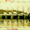 """Five fishing boats in Gig Harbor.<br /> """"Shenandoah"""" - second from right."""
