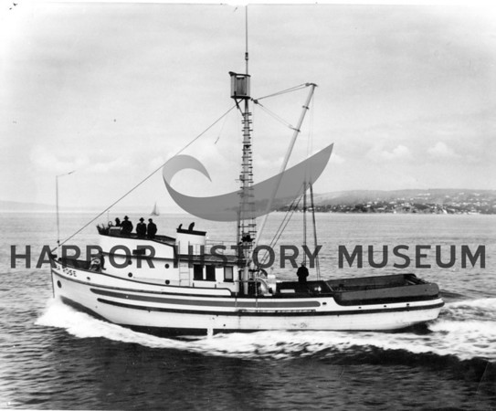 """""""Sea Rose"""" built by Kazulin & Cole, Tacoma in 1949 for Pete Skarponi.<br /> Powered 500 HP Jimmy; length 72'<br /> Hit a submerged object and sank 3 1/2 miles east of Sister Island, Georgia Strait, WA 6/2/56."""
