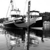 """Avalon"" and ""Genius"" at anchor in Gig Harbor."