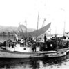 """Aeroplane"" docked with other fishing boats."