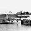 "Steamer ""Aracadia"" at McNeil Island. 1950"