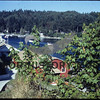 Gig Harbor entrance in 1982, taken from the end of Harborview Drive, looking northwest.  The red Peter Skansie net shed is below the bushes.  Dave and Mame Morris are the current owners.  It is now grey.   Source: Chamber of Commerce